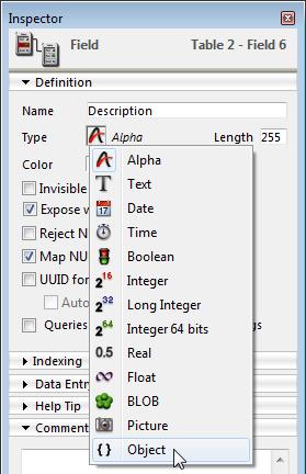 Object Field data type
