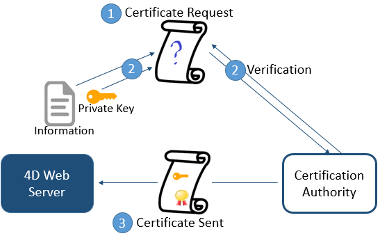 TLS Protokoll